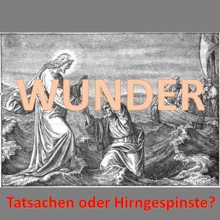 Wunder: Tatsachen oder Hirngespinste?