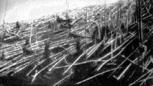 Zerstörter Wald bei Tunguska